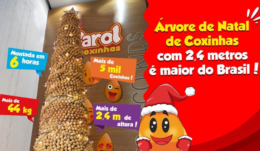 Árvore de Natal de Coxinhas com 2,4 metros é maior do Brasil